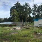 Solar Panel di Indonesia